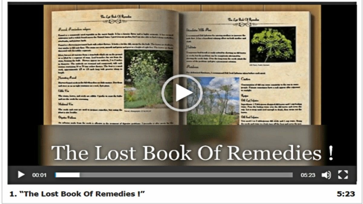 WHAT IS THE LOST BOOK OF REMEDIES