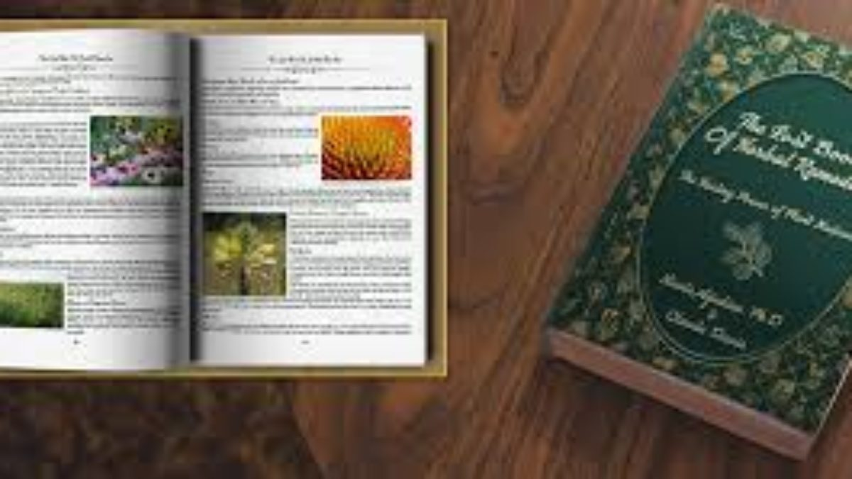 the-lost-book-of-remedies-